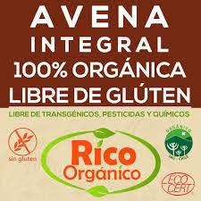 Avena sin Gluten Rico Orgánico      kilo